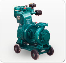 Single Cylinder Air Cooled Water Pumpsets